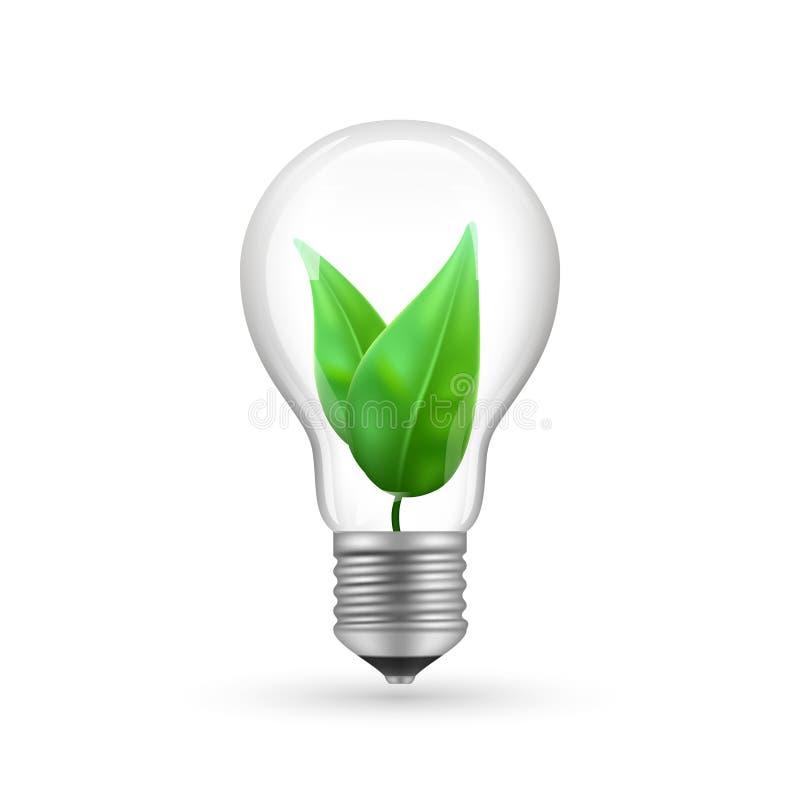 Realistisches eco Glühlampe lokalisiert auf weißem Hintergrund Energiewirtschafts-Lampenvektorillustration vektor abbildung