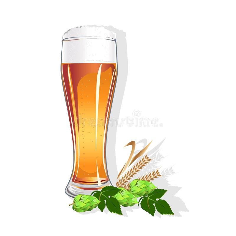 Download Realistisches Glas Mit Bier Vektor Abbildung - Illustration von auslegung, schaum: 96929369