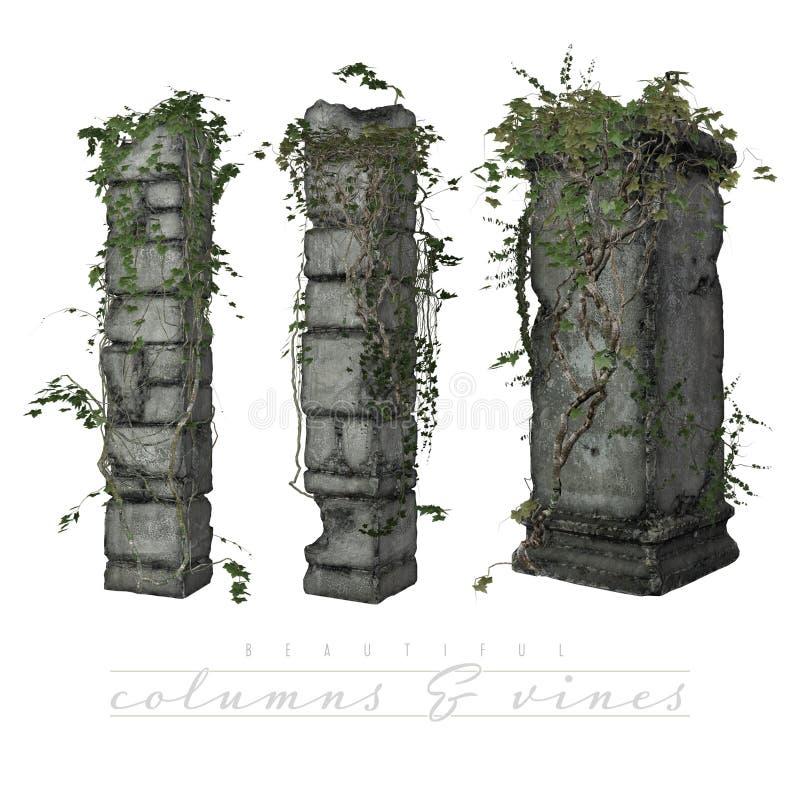Vines som växer på gammala kolonner stock illustrationer