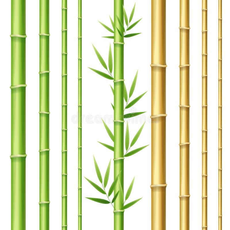 Realistisk 3d specificerad bambuskottuppsättning vektor royaltyfri illustrationer