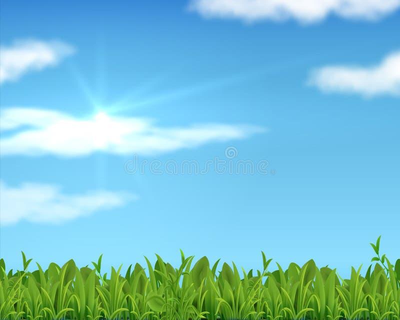 Realistisk gräsmatta och himmel gräsbakgrund för vår 3D med solen och moln Vektorbaner för affärspresentation och royaltyfri illustrationer
