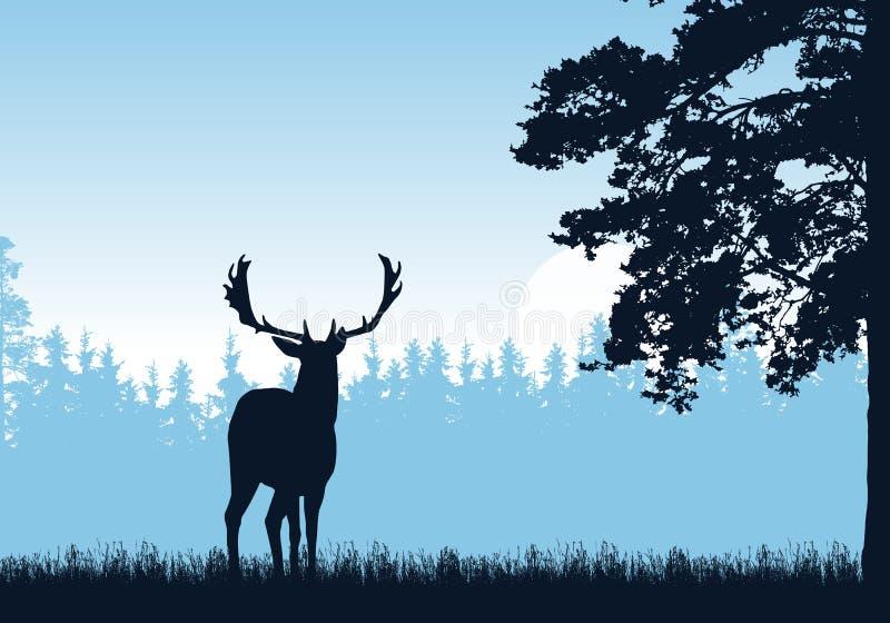 Realistisk illustration av stående hjortar, gräs och det höga trädet Skog under bl?ttskyen Med utrymme f?r text - vektor stock illustrationer