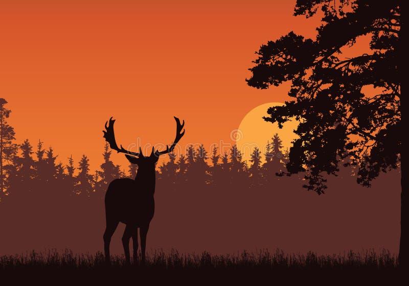 Realistisk illustration av stående hjortar, gräs och det höga trädet Skog under orange himmel med soluppgång eller solnedgång Med stock illustrationer
