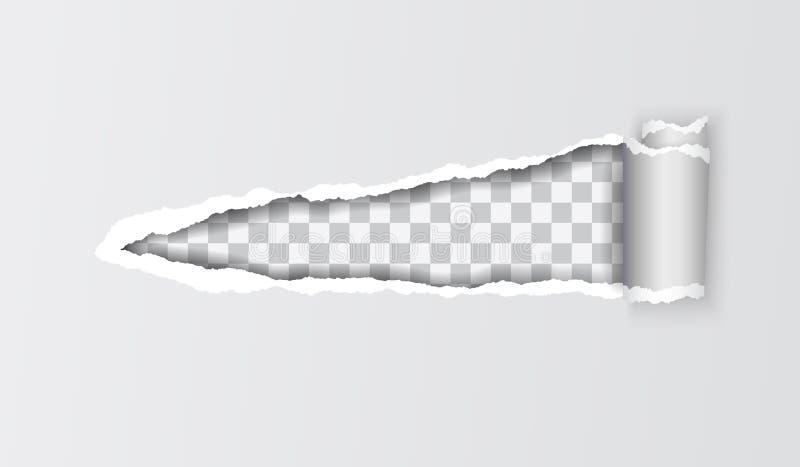 Realistisk illustration för vektor av grått sönderrivet papper med rullande edg vektor illustrationer