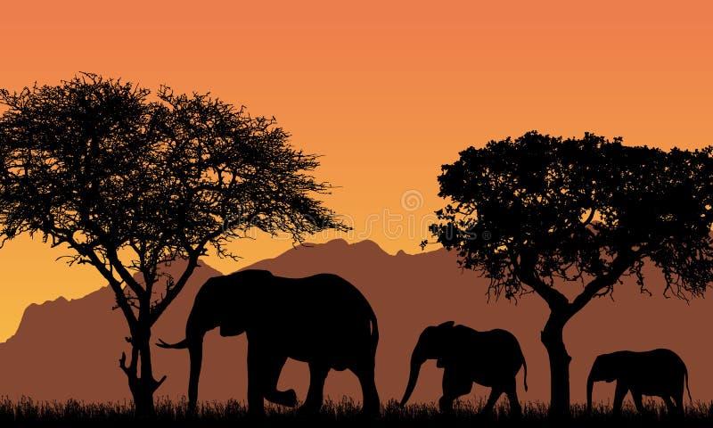 Realistisk illustration med konturer av tre elefanter - familj i afrikanskt safarilandskap med träd, berg under apelsinen royaltyfri illustrationer