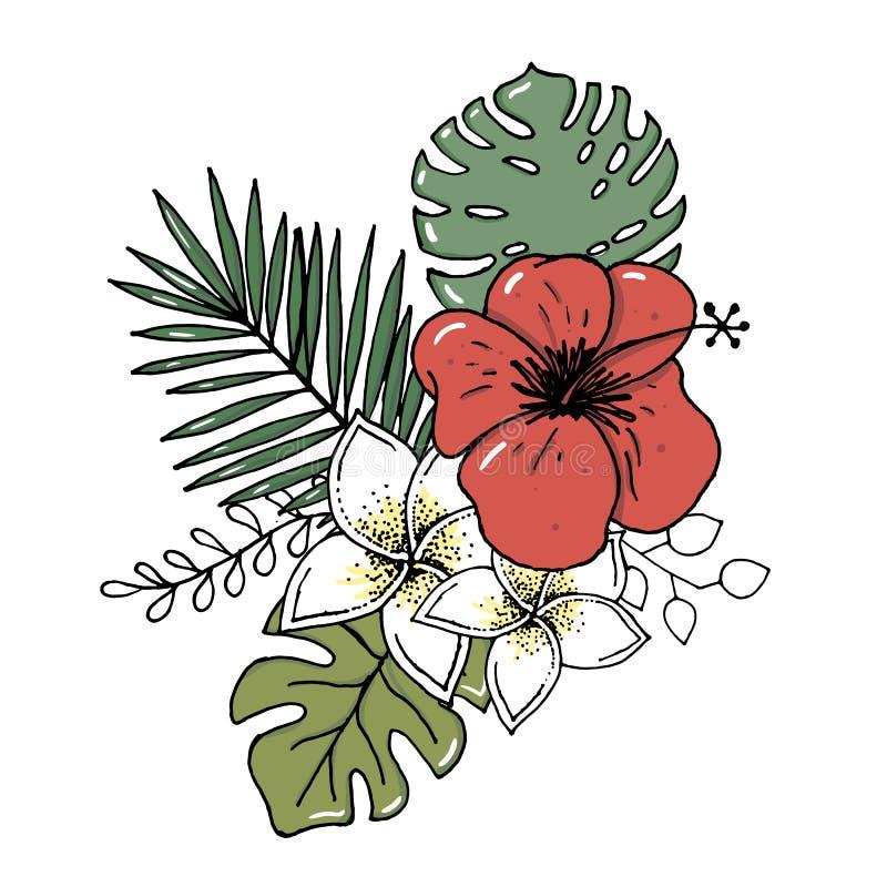 Realistisk illustrationuppsättning för vektor av tropiska sidor och blommor som isoleras på vit bakgrund Högt detaljerad färgrik  vektor illustrationer