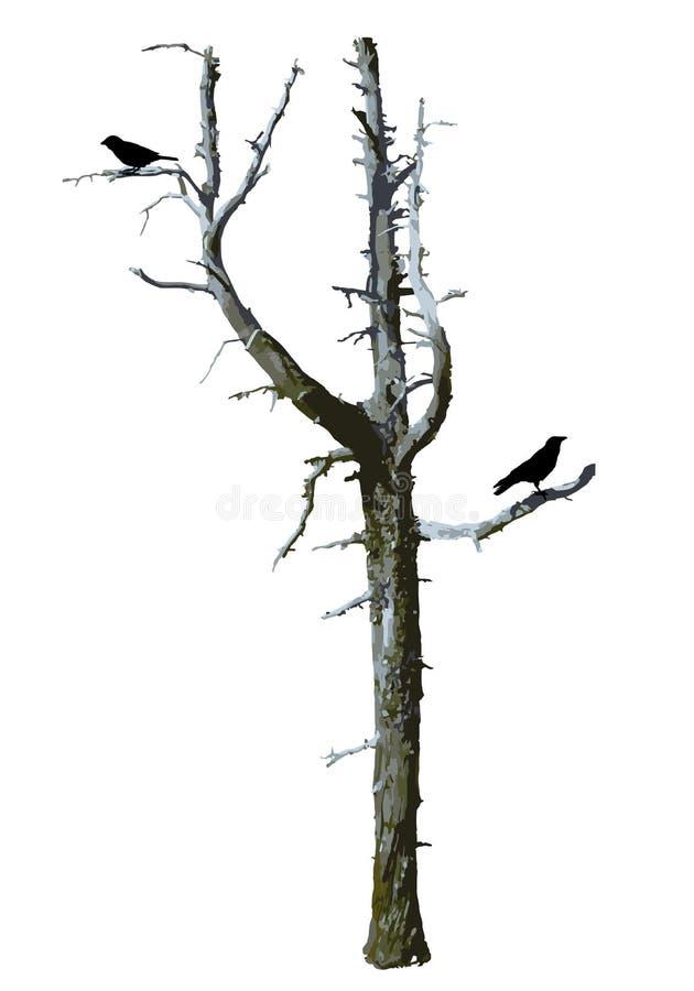 Realistisk kal läskig trädvektor med fåglar vektor illustrationer