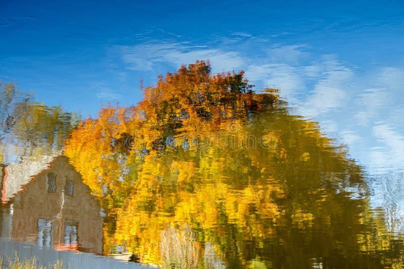 Download Realistisk Lantlig Vattenreflexion I Damm Arkivfoto - Bild av färg, verkligt: 27283254