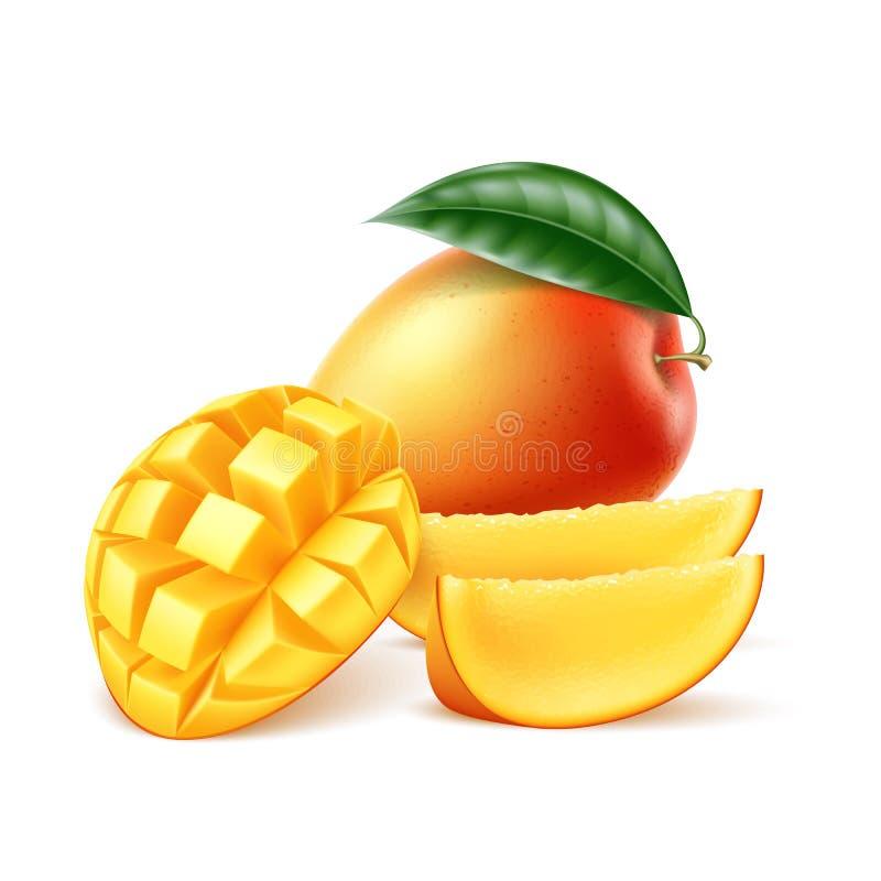 Realistisk mogen mangofrukt för vektor med bladet vektor illustrationer