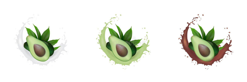 Realistisk ny grön avokadofruktfruktsaft, mjölkar, chokladuppsättningfärgstänk Avokadohalva med sidor, i att plaska f?r virvelr?r arkivbilder
