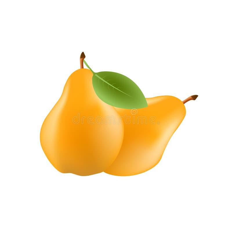 Realistisk päronfrukt med bladet som isoleras på vit bakgrund också vektor för coreldrawillustration Söt frukt stock illustrationer