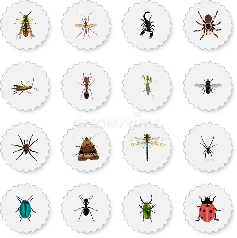 Realistisk spindeldjur, giftigt, Damselfly och andra vektorbeståndsdelar Uppsättningen av realistiska symboler för kryp inkludera vektor illustrationer