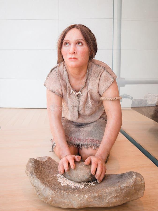 Realistisk staty av en förhistorisk kvinna i museet av vetenskap arkivbild