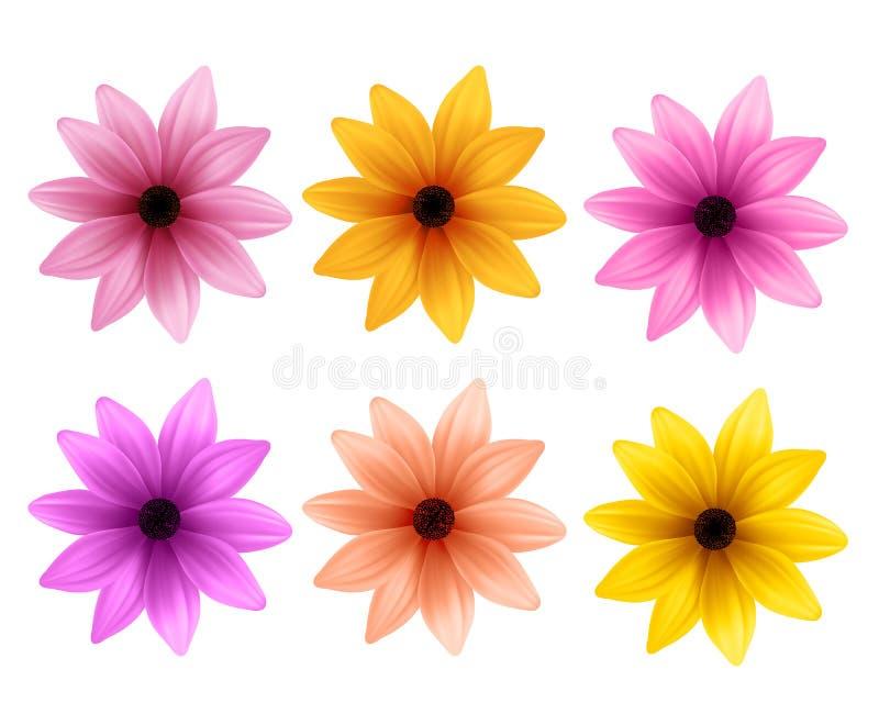 Realistisk uppsättning 3D av färgrika Daisy Flowers för vårsäsong stock illustrationer