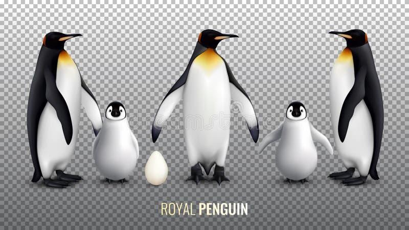 Realistisk uppsättning för kunglig pingvin vektor illustrationer