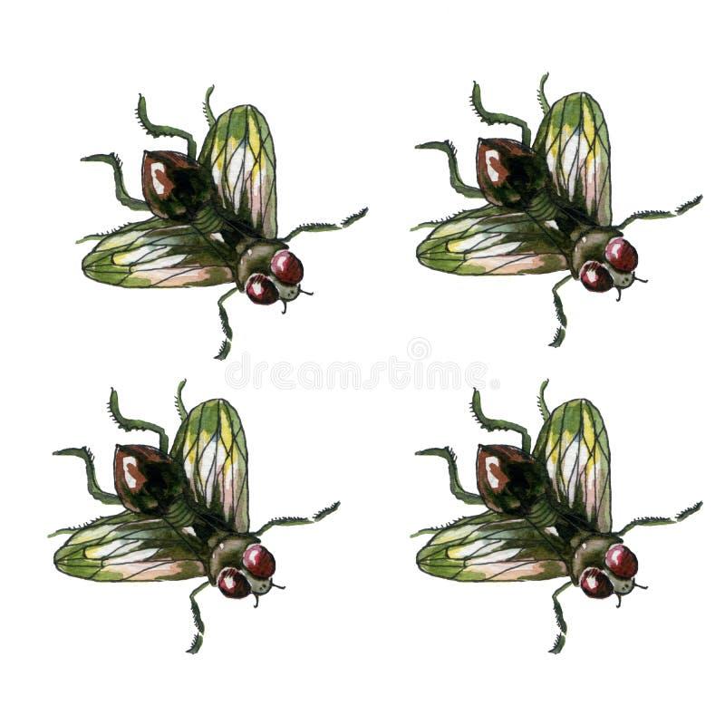 Realistisk vattenfärgfluga stock illustrationer