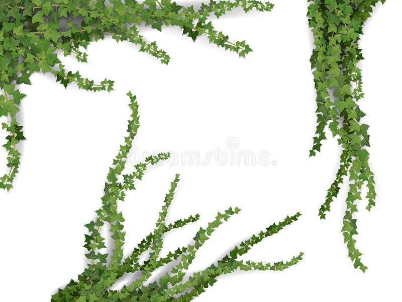 Realistisk vektormurgrönauppsättning royaltyfri illustrationer