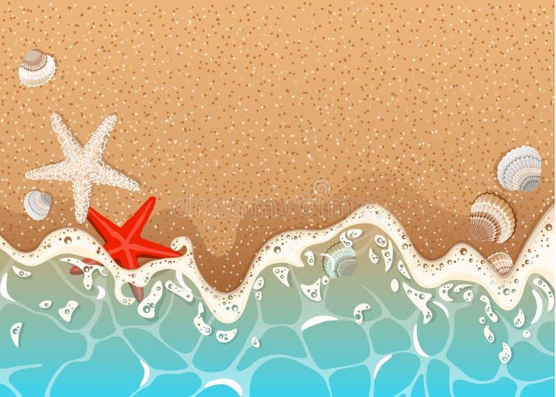 Realistisk vektorram av den azura skummande vågen, sjöstjärnan och skal stock illustrationer