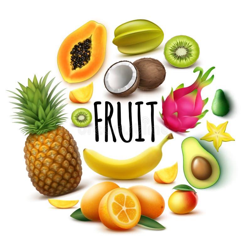 Realistiska nya exotiska frukter rundar begrepp vektor illustrationer
