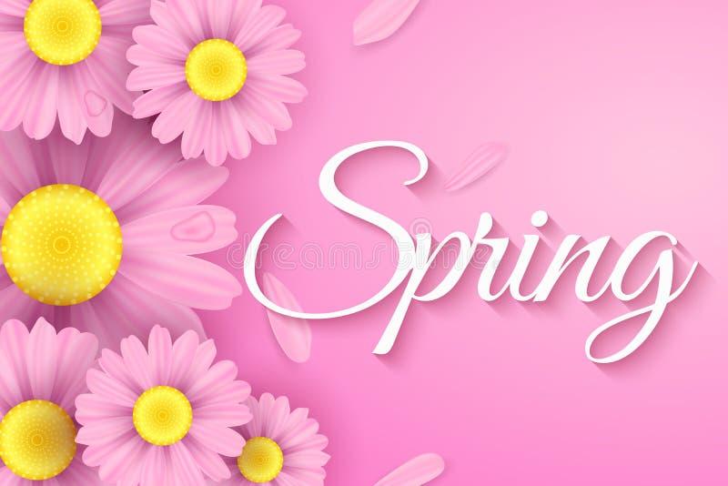 Realistiska rosa tusenskönablommor Stilfull modern räkning för vår för ditt projekt Ekologisk vårsammansättning Säsongsbetonat re vektor illustrationer