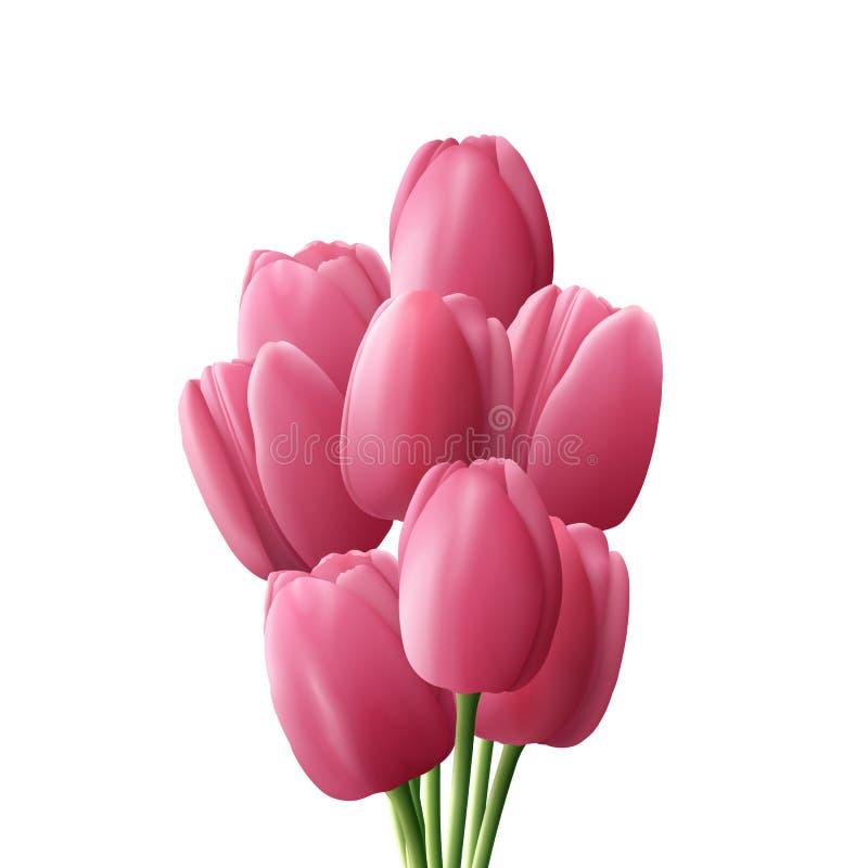 Realistiskt för blommatulpan som isoleras på vit bakgrund rosa tulpan för bukett stock illustrationer