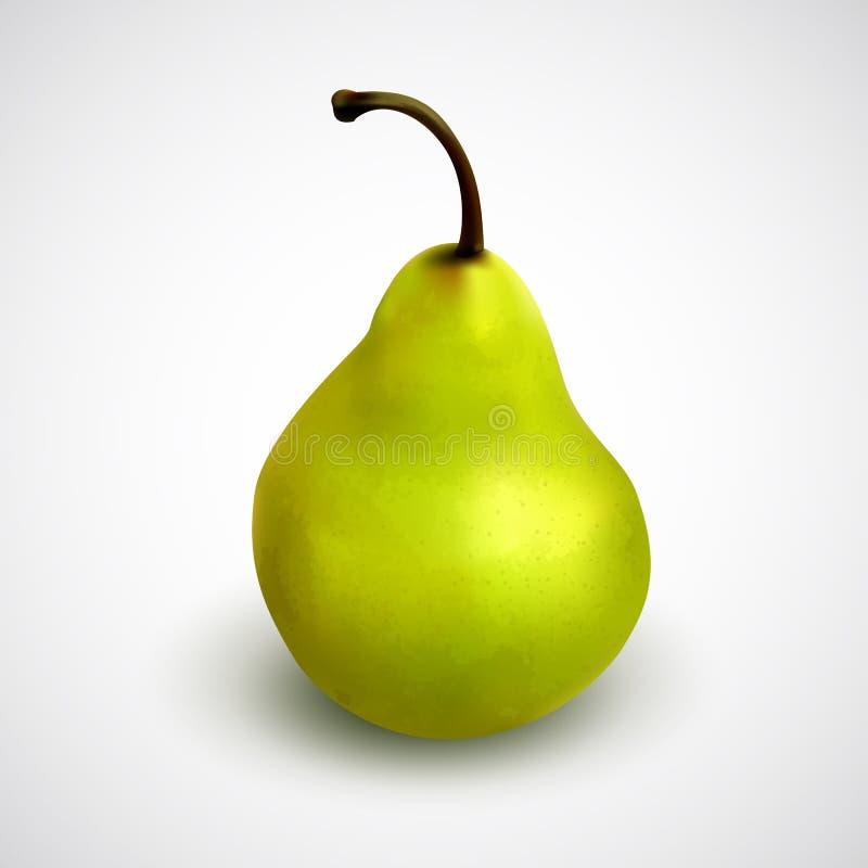 Realistiskt grönt päron stock illustrationer