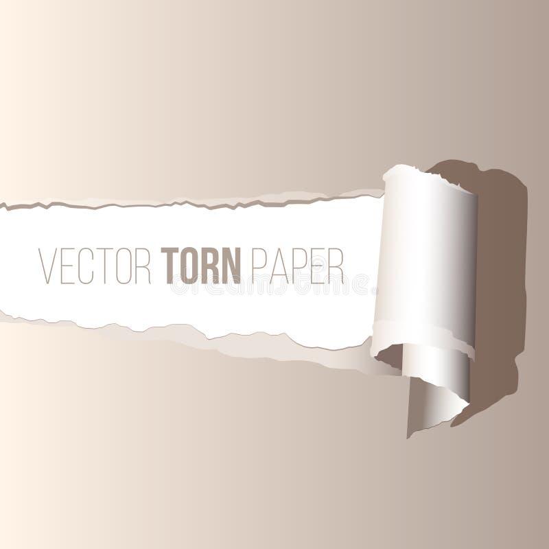 Realistiskt sönderrivet papper för vektor med skugga royaltyfri illustrationer