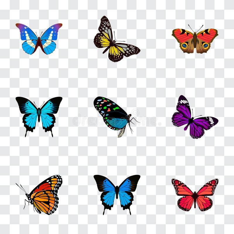 Realistiskt sommarkryp, Papilio Ulysses, Bluewing och andra vektorbeståndsdelar Uppsättning av realistiska symboler för skönhet o royaltyfri illustrationer
