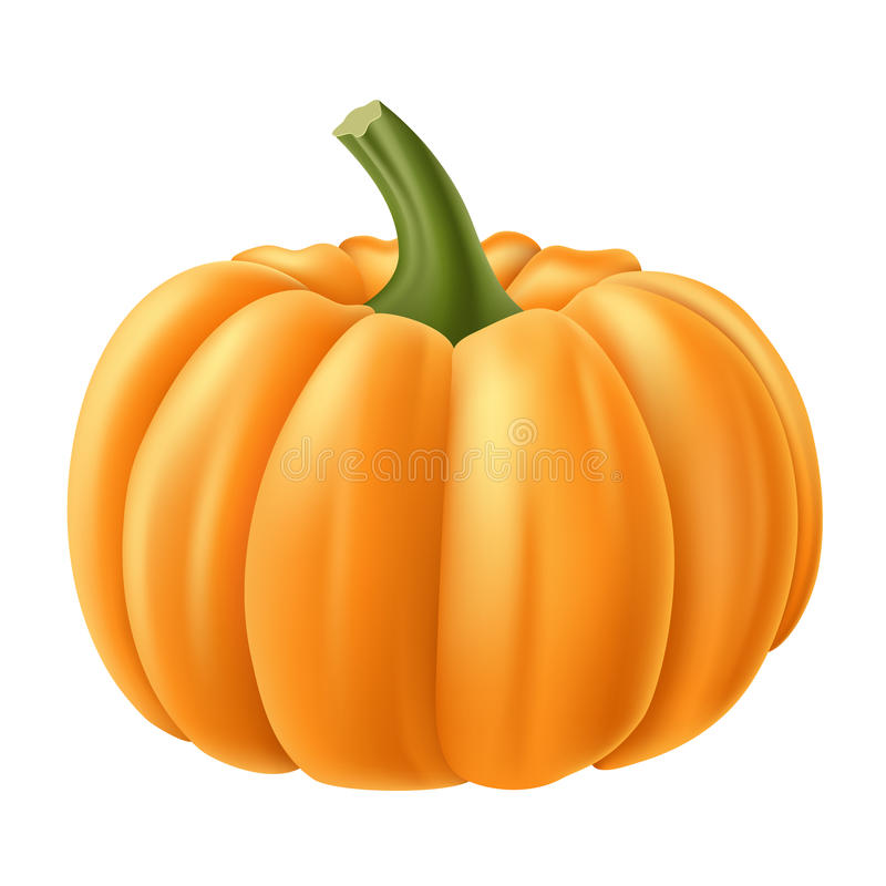 Realistyczna dyniowa ilustracja dla jesieni i Halloween royalty ilustracja