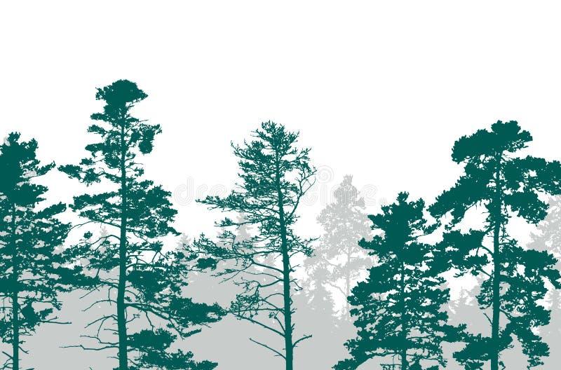 Realistyczna ilustracja zielony las z iglastymi drzewami w royalty ilustracja