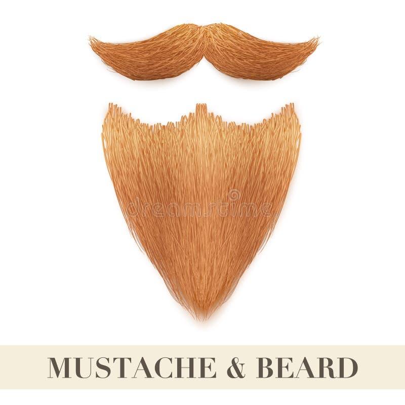 Realistyczna imbirowa broda z kędzierzawym wąsy ilustracja wektor