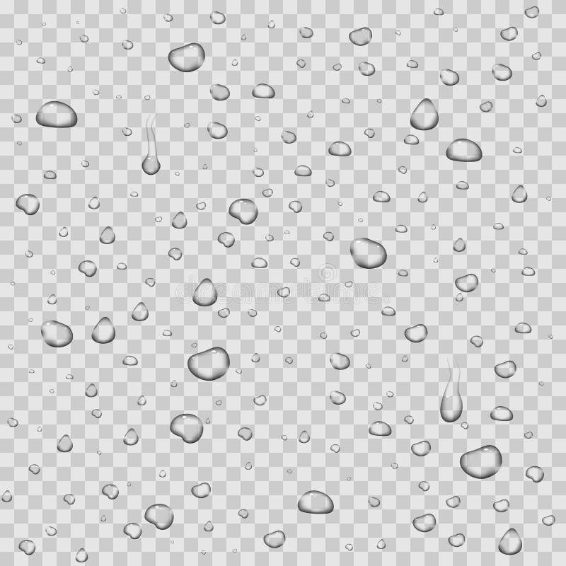 Realistyczna wektor woda opuszcza przejrzystego tło ilustracja wektor
