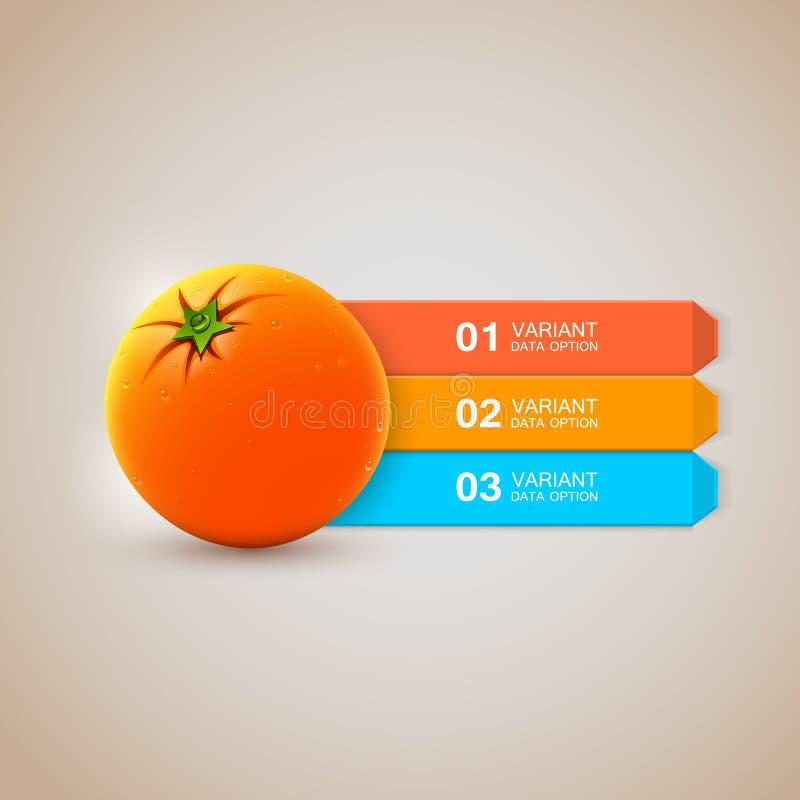 Realistyczne świeże pomarańczowe infographics opcje royalty ilustracja