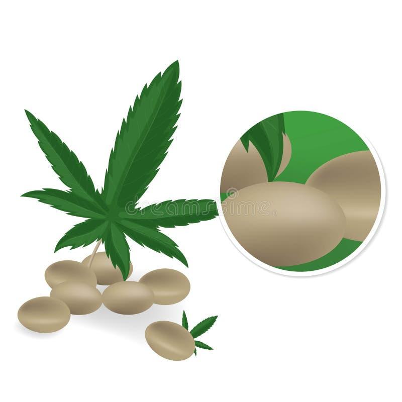 Realistyczni konopiani ziarna z li?ciem odizolowywaj?cym na bia?ym tle Marihuany wi?zka Marihuana stos r?wnie? zwr?ci? corel ilus ilustracji