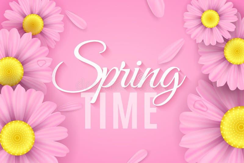 Realistyczni różowi stokrotka kwiaty Wiosny sezonowa elegancka nowożytna pokrywa dla twój projekta Ekologiczny skład Latający pła royalty ilustracja