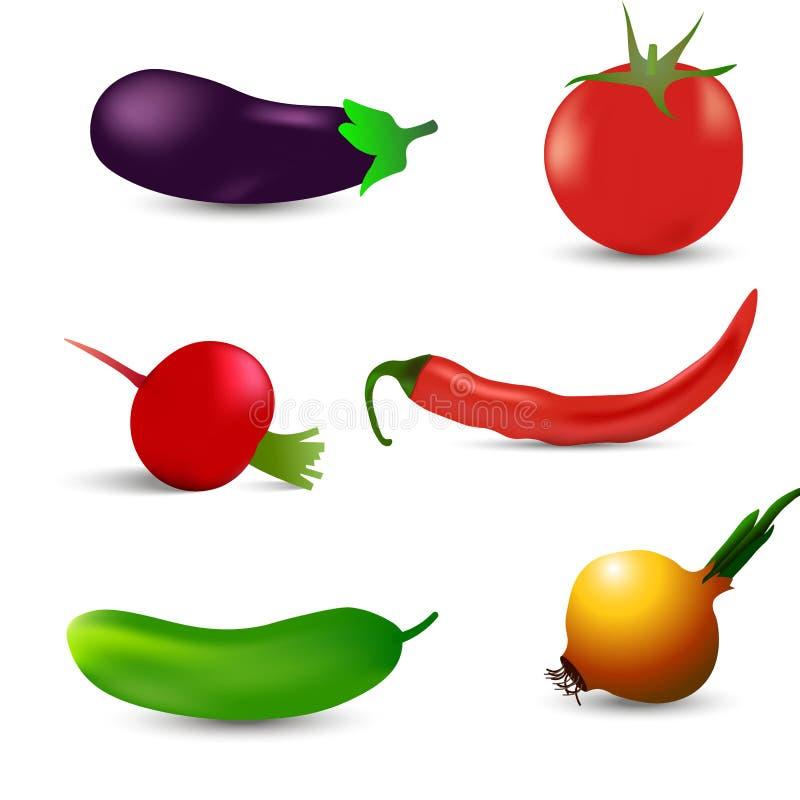 Realistyczni warzywa ustawiający z pomidorem, czerwony pieprz, oberżyna, rzodkwi cebula na białym tle royalty ilustracja