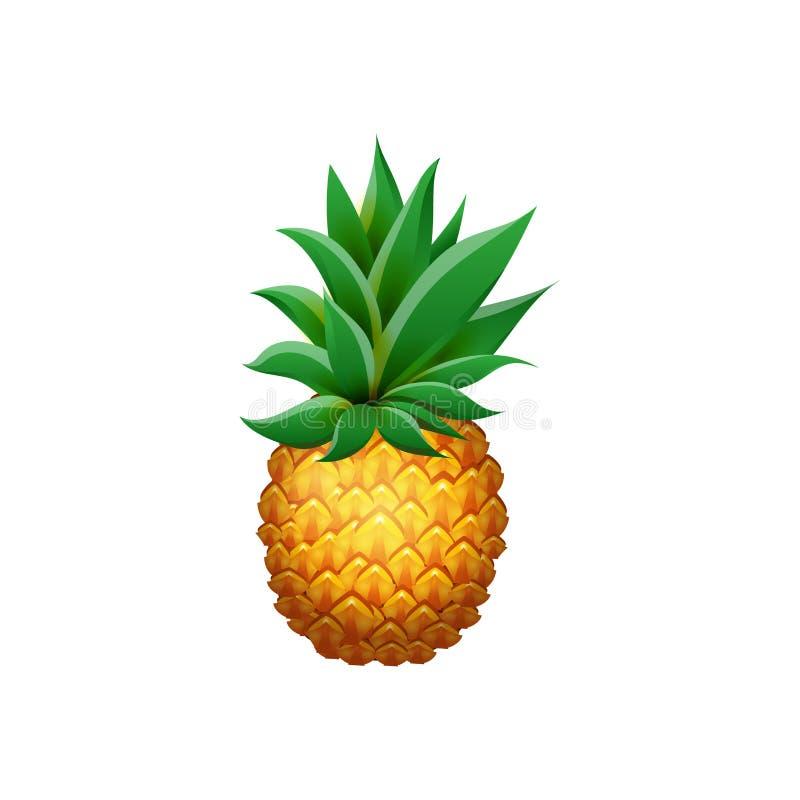 Realistyczny ananas odizolowywający na białym tle Kreskówek ciał soczysta tropikalna owoc ilustracja wektor