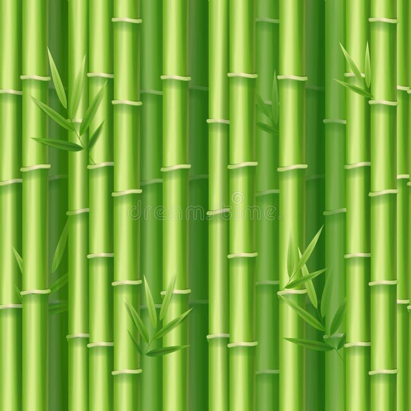 Realistyczny 3d Bambusowych krótkopędów Szczegółowy tło wektor ilustracja wektor