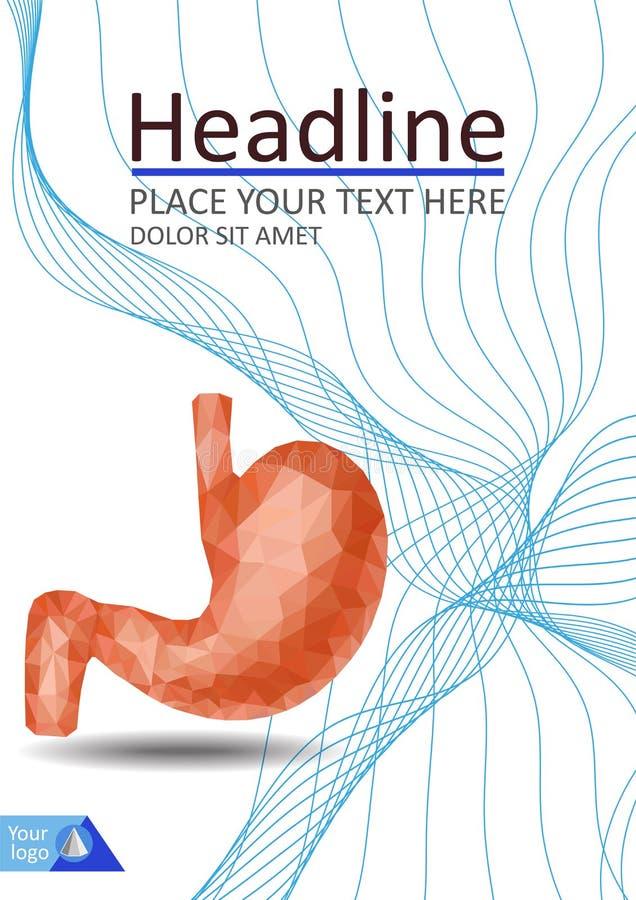 Realistyczny 3d niski poli- ludzki żołądek i dwunastnica Zdrowy przegląd ilustracja wektor