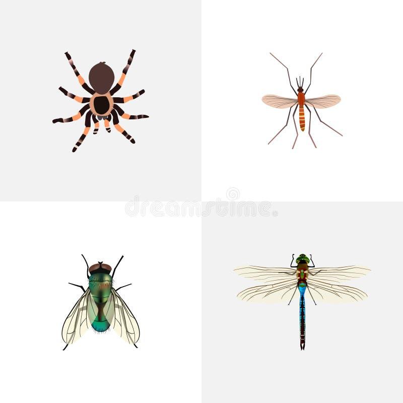 Realistyczny Housefly, meszka, Damselfly I Inni Wektorowi elementy, Set insektów Realistyczni symbole Także Zawiera Housefly obraz stock