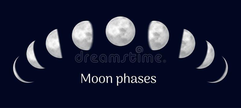 Realistyczny księżycowy kalendarz zawiera wszystkie miesiące ilustracji