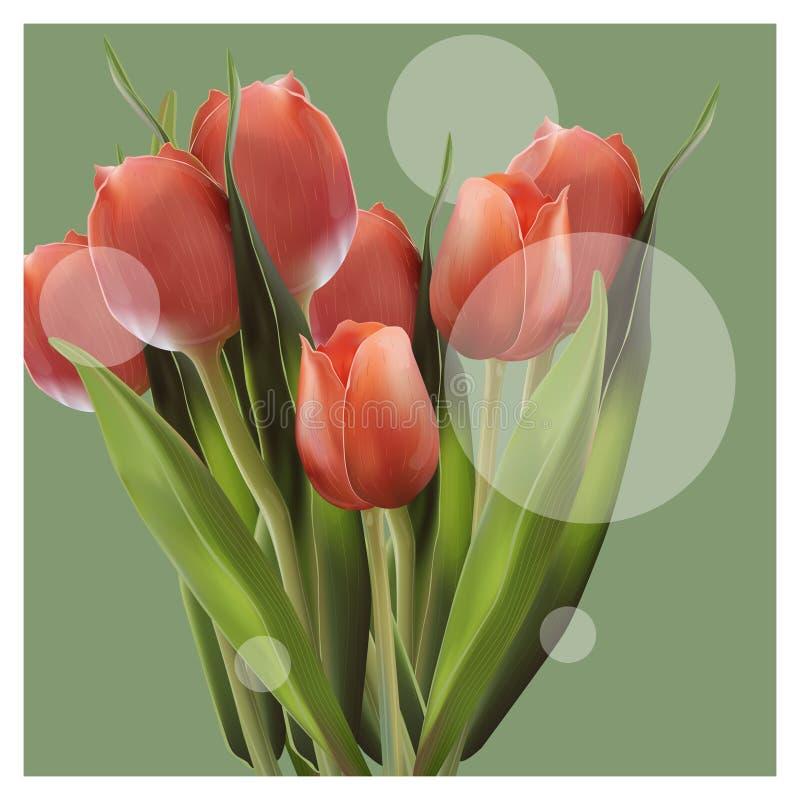 Realistyczny kwiatu tulipan Tulipan w wektorze eps 10 royalty ilustracja