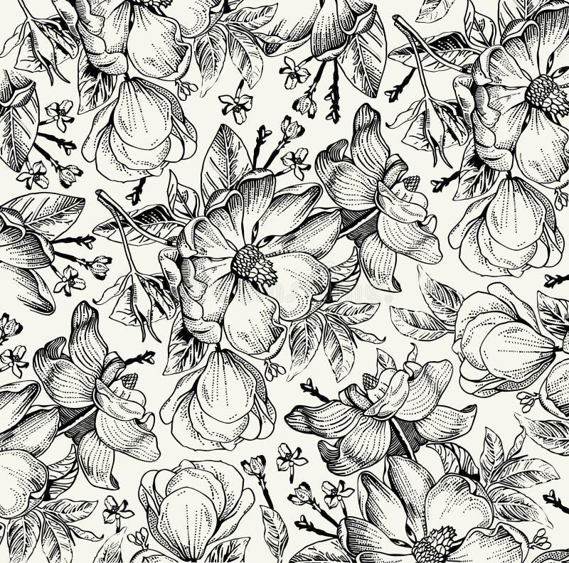 Realistyczny odosobniony kwiatu wzór Rocznika baroku tło Różany dogrose, rosehip, brier wally Rysunkowy rytownictwo ilustracji