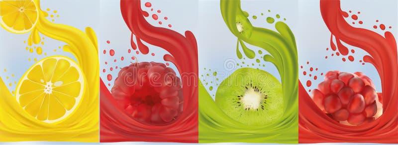 Realistyczny owocowy sok, kiwi, malinka, granatowiec, cytryna ?wie?e owoce Owocowi plu?ni?cia zamkni?ci w g?r? 3d wektor ilustracji