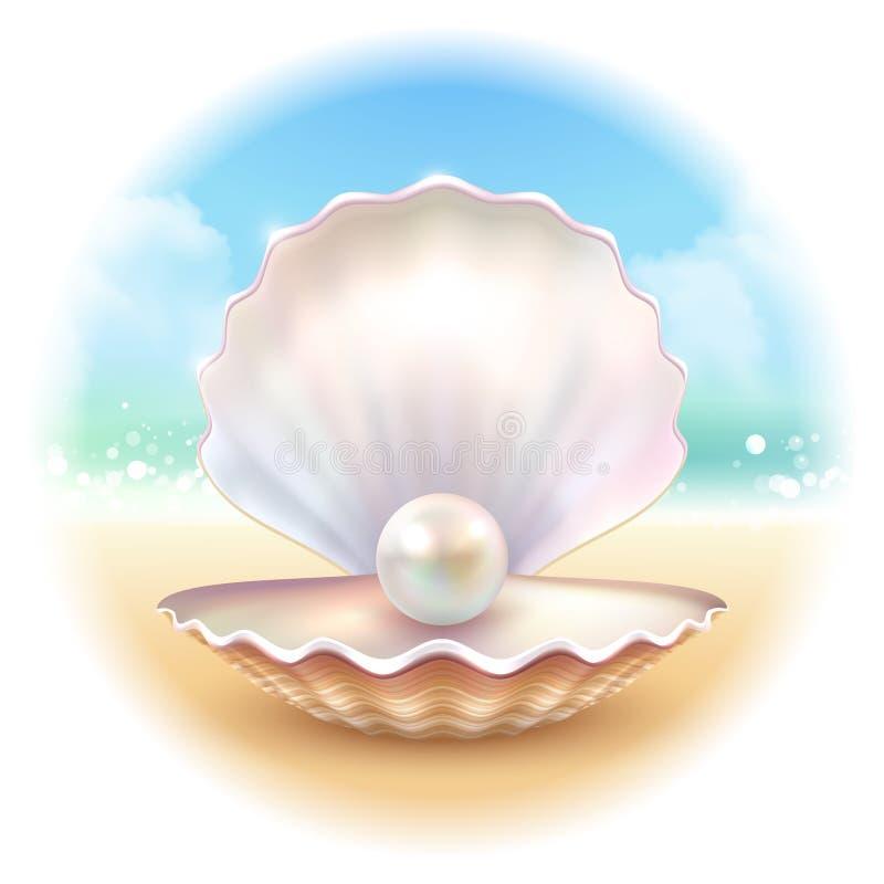 Realistyczny Shell Round skład ilustracji