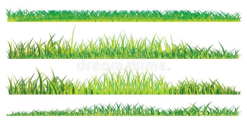 realistyczny trawy lato ilustracja wektor