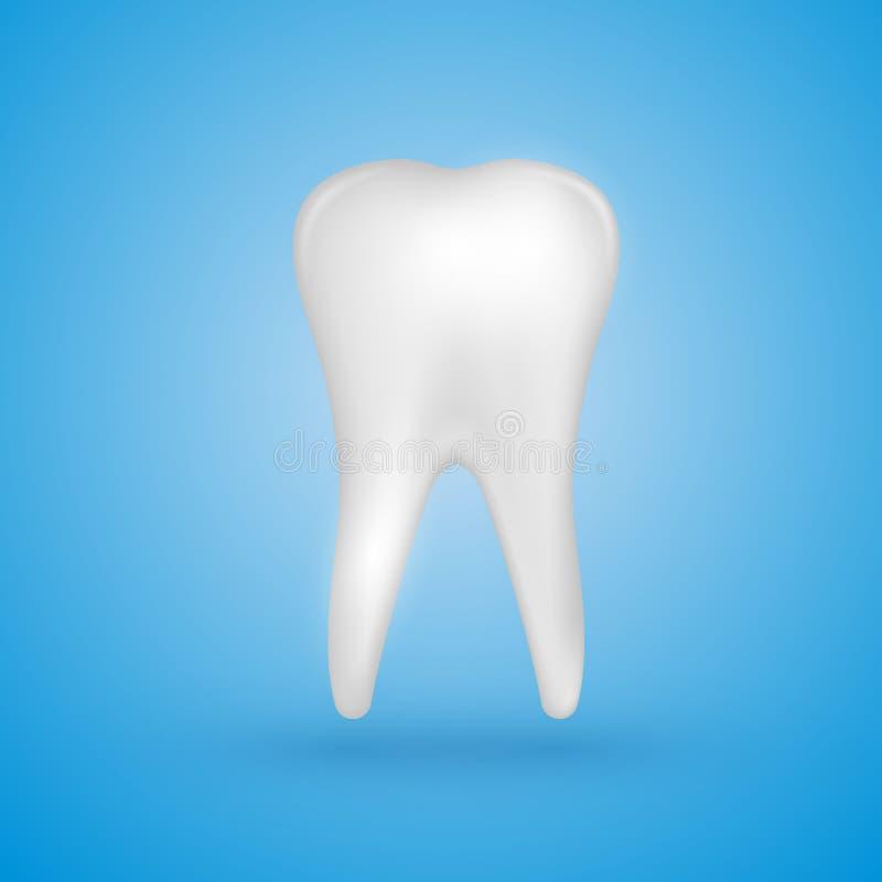 Realistyczny zębu plakat ilustracji