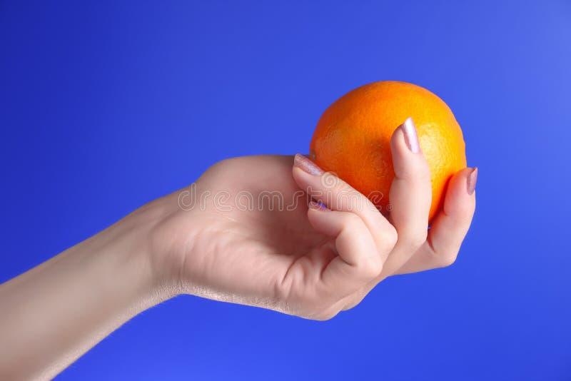 Realizar da mulher em suas laranjas da mão imagem de stock royalty free