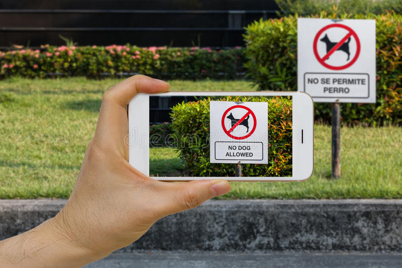 Realtà aumentata in tempo reale di traduzione di lingua, AR, concetto di App facendo uso di Smartphone IOT per tradurre testo sul immagini stock libere da diritti