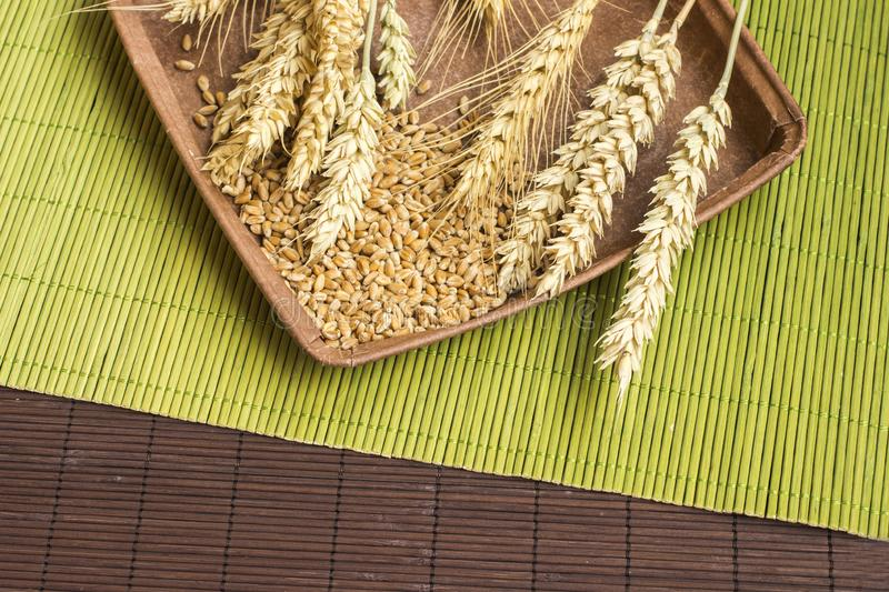 Reap of durum wheat from different varieties.  Wheat grains in a plate. Top view royalty free stock image